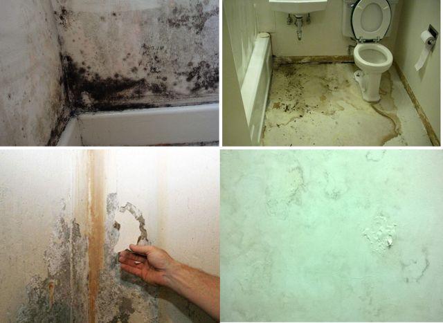 Dịch vụ chống thấm dột nhà vệ sinh